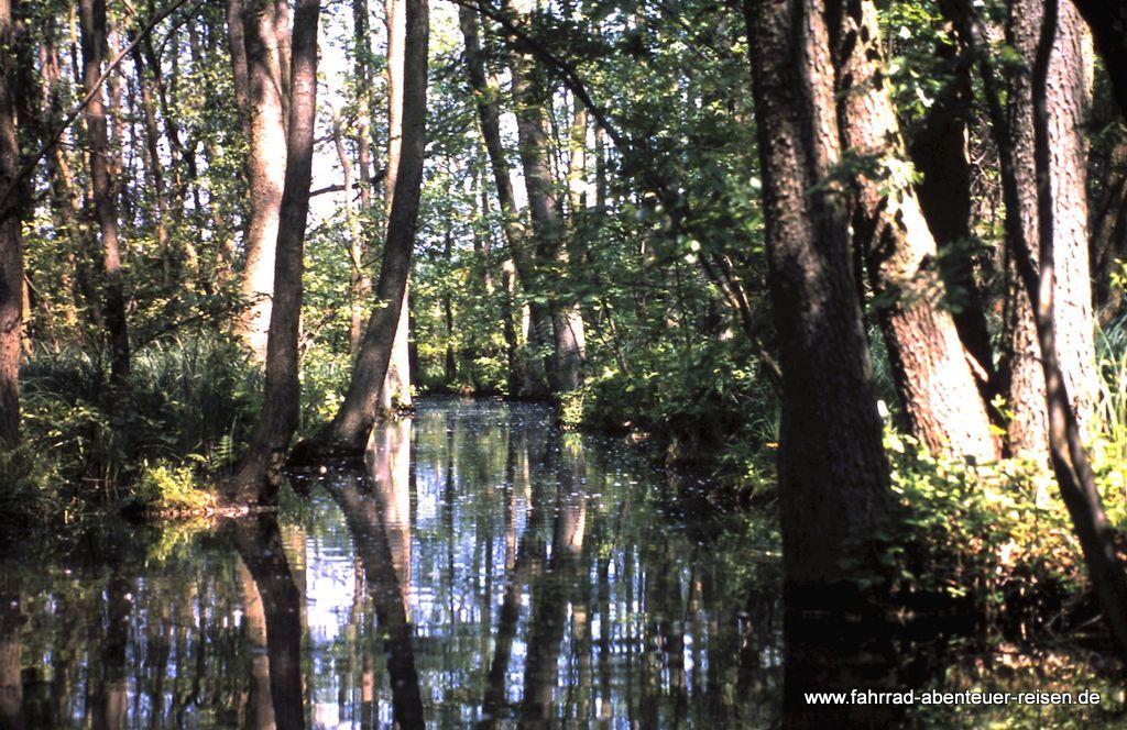 Gewässer fürs Kanuwandern