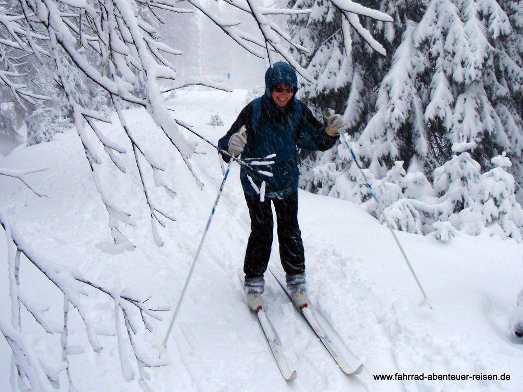 Einstieg zum Langlauf: Infos und Tipps zu einer spannenden Wintersportart