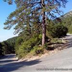 Llogara National Park - Albanien-Süd