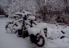 Radreisen im Winter – Tipps für Fahrradurlaub bei Kälte, Eis und Schnee