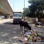 Indiens Straßen