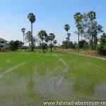 vor Ayutthaya