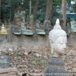 Buddha-Friedhof in Chiang Mai
