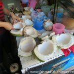 Kokosnüsse - Reiseinfos Laos