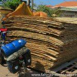 Bambus-Wände