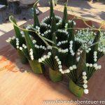 Tempelschmuck aus Pflanzen
