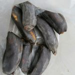 Bananen bei 40 °C in der Packtasche