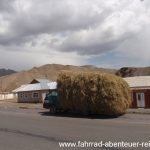 Heutransport in Sary-Tash