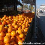 Orangen in Griechenland