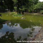 Seenivasagam Park