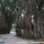 Der Park hinter den Petronas-Twin-Towers
