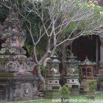 Champa-Tree am Hindu-Tempel auf Bali