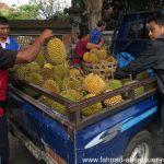 Durian-Verkauf auf Bali