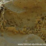 Sandstein hinter Kurow