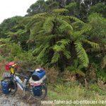 Westküste - Neuseeland