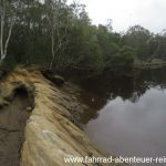 Bellinger River