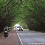 Highway mit Seitenstreifen