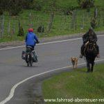 Reiseradler trifft Gaucho