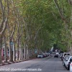 Allee in Montevideo