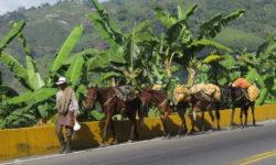 Kolumbien Reisebericht