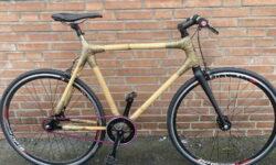 Fahrrad leichter machen - Bambus - Singlespeed